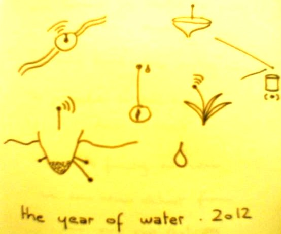 the year of water